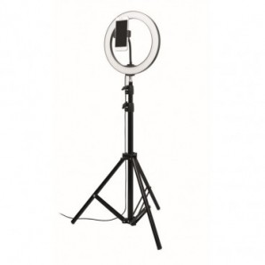 Cinta adhesiva fibra vidrio filamentos cruz 25 mm